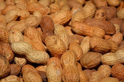 cacahuetes15