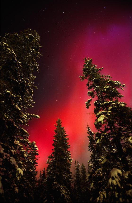 aurora-boreal21
