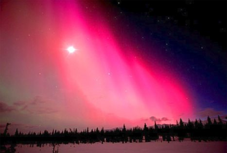 Alaska. Cantwell. aurora Borealis lights up the interior night sky.