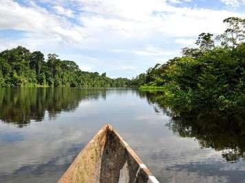 Amazonias44
