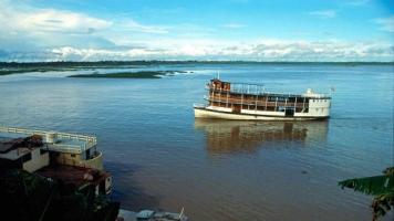 Amazonias55