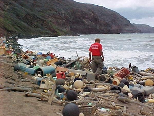 Desechos marinos costa de Hawii