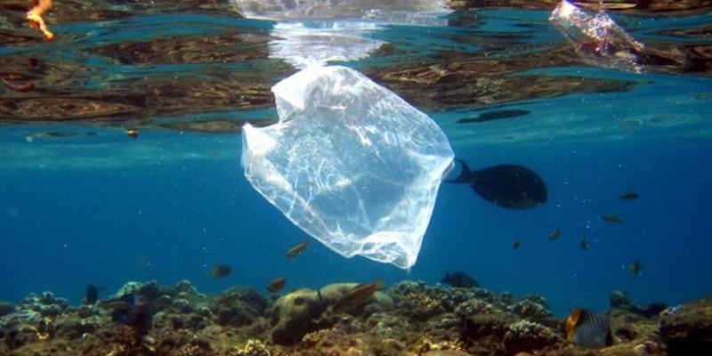 plásticos contaminantes3